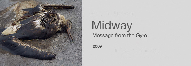 Midway - Message from the Gyre